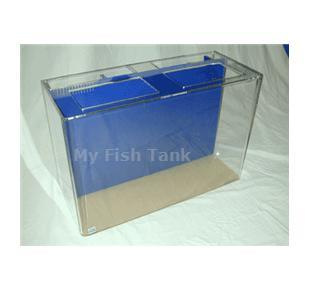 <p>40U UniQuarium with built-in filter includes pump, light hood or Polycarbonate Light Plate and Limited Lifetime Warranty. NOTE, DUE TO THE COVIC-19 PANDEMIC AND THE GOVERNMENTS PRIORITY TOWARDS FACE MASK PRODUCTION OUR DELIVERY TIME ON ACRYLIC AQUARIUMS
