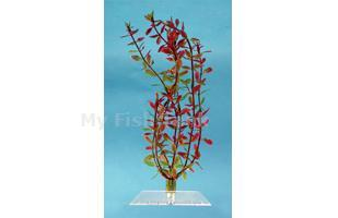 Rotala - 12 in.  Fantastic Water Wonders plants plug directly into your Water Wonders ornament Choose from a variety of beautiful aquatic plant replicas and turn your aquarium into a lush, green paradise for your fish
