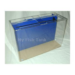 <p>This 55 gallon Rectangular Seahorse tank comes complete with built-in filter system, a light hood and a florescent fixture and the Clear For Life Warranty.